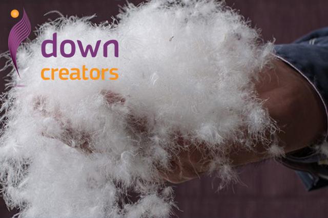 Висококачествен естествен гъши пух от Down Creators